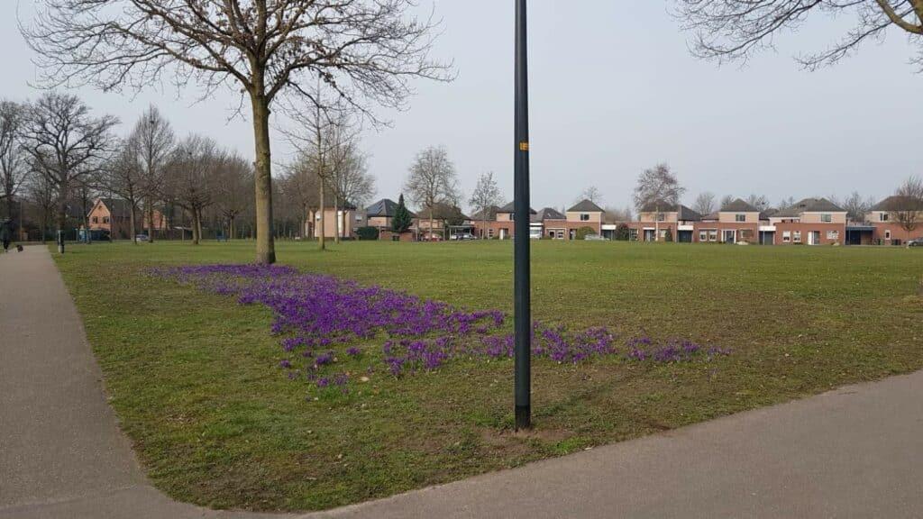 Park Marie de Roodelaan 4